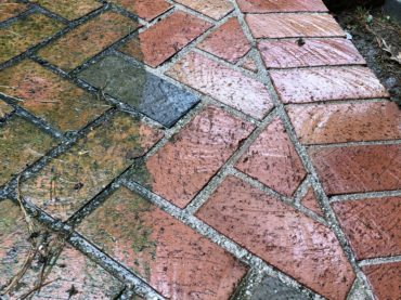 a pressure washed brick patio