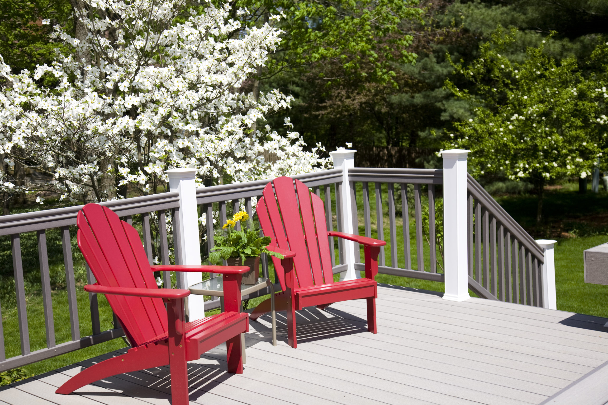 A grey painted deck with red chairs in front of white flowers
